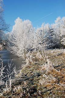 Winterlandschap in Nederland